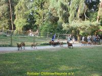 Vogelpark_2015_004