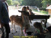 Vogelpark_2015_027
