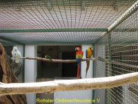 Vogelpark_2015_073