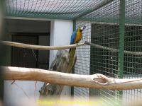 Vogelpark_2015_074