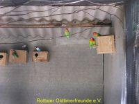 Vogelpark_2015_079